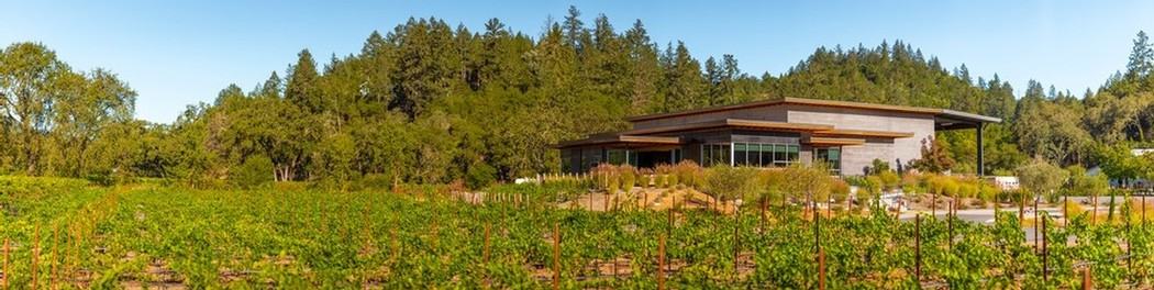 Distance Tasting Room and Vineyard
