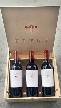6 btl Merlot Vertical Box