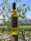Titus Olive Oil - Tuscan Blend
